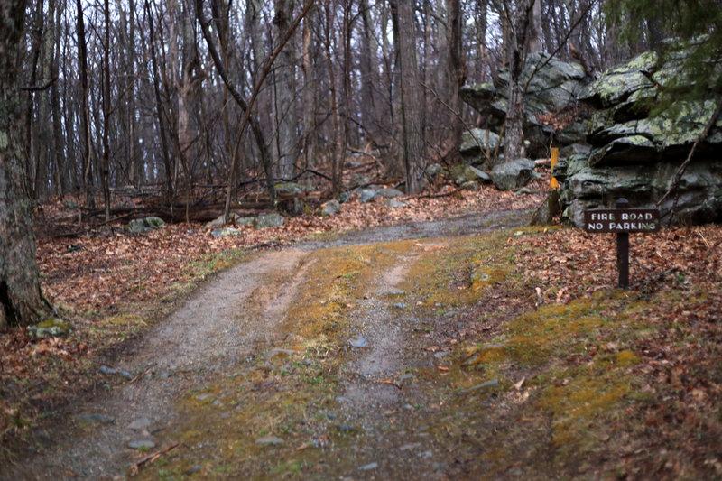 Start of Hawksbill Trail/Byrds Nest #2 Fire Road.