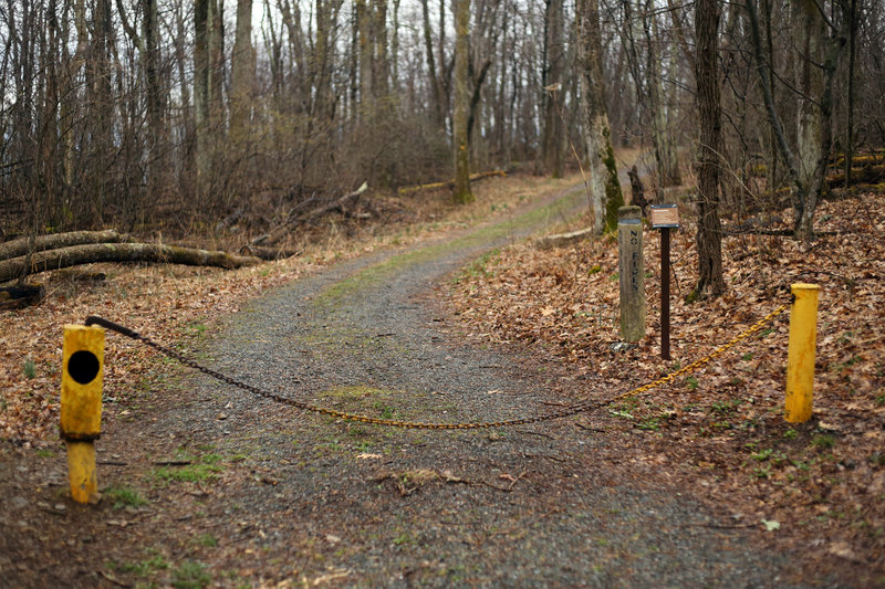 The start of the Pocosin Fire Road, which leads to the site of a former church and mountain settlement.