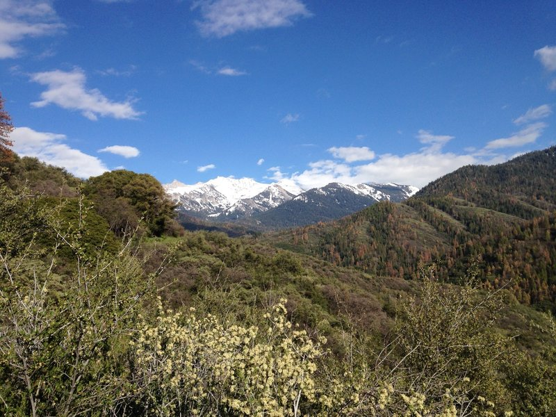 The first good vista of the Great Western Divide and Eagle Scout Peak.