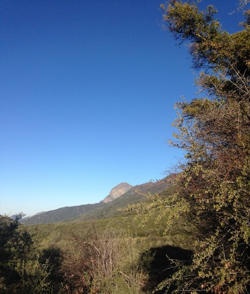 Moro Rock from the trail.