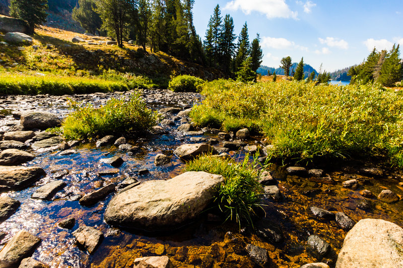 A stream flowing into Beauty Lake. with permission from Hobbes7714 Photo Credit: Andrew Wahr  Link: https://twitter.com/WahrAndrew