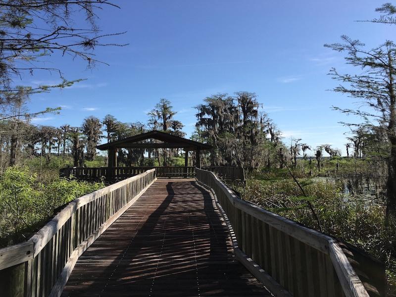 Boardwalk cover observation deck at Osprey Point.