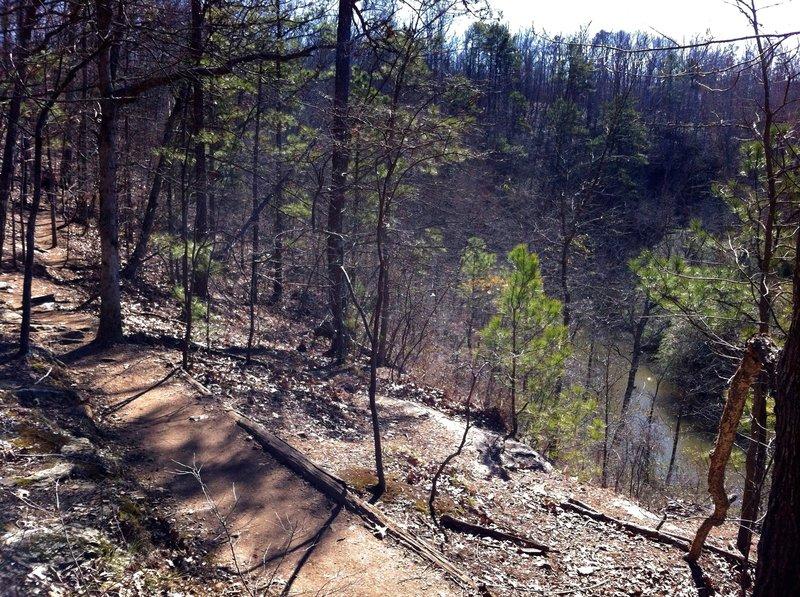 Trail above Big Creek.