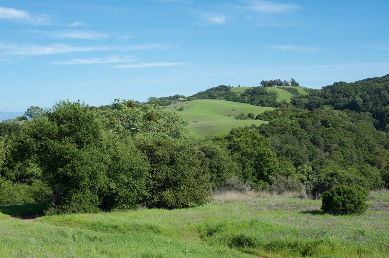 Views of the surrounding hills.
