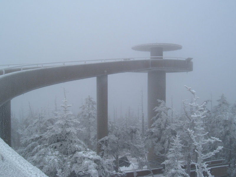 Socked in at Clingmans Dome. Photo by William Dolling.
