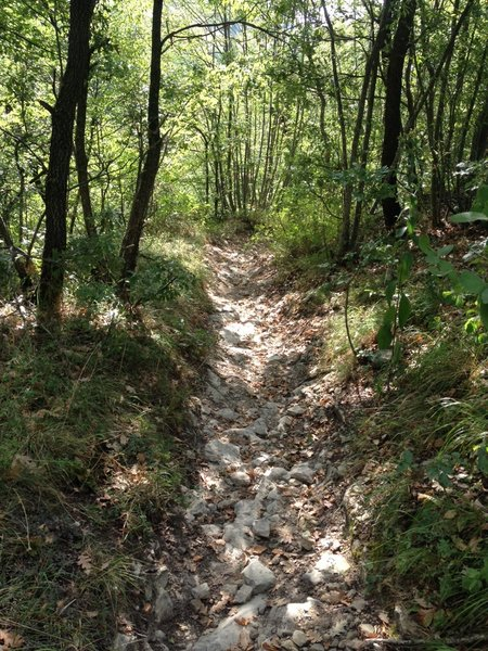 A more technical section of the trail from Poiago