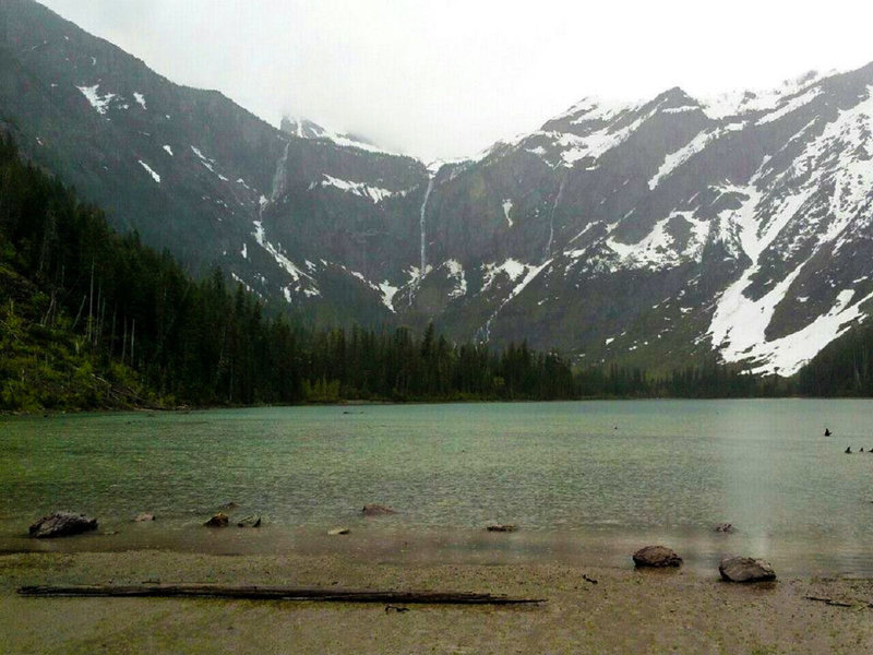 A chilly, rainy day in May at Avalanche Lake.