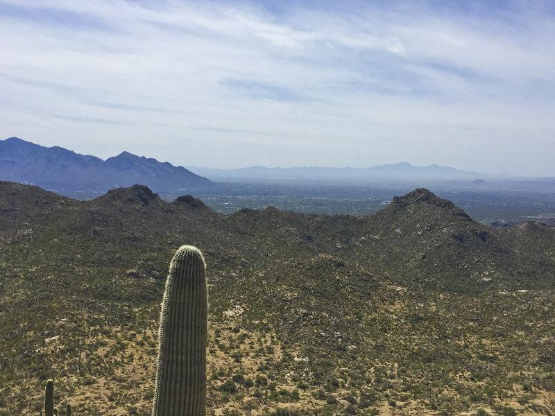 Incredible views towards downtown Tucson!