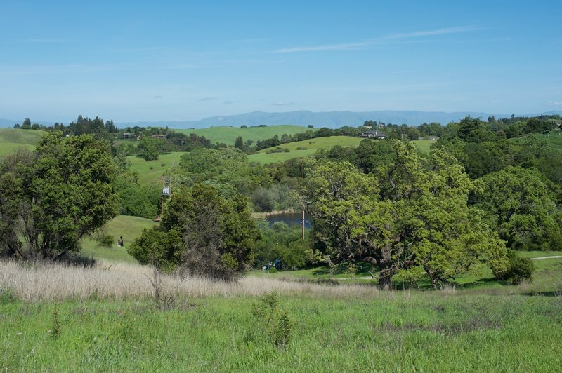The Arastradero Lake at the bottom of the hill.