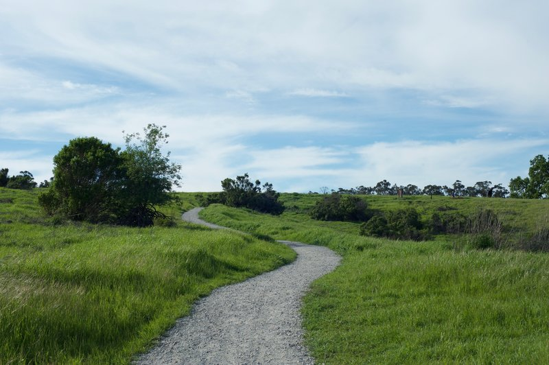 The trail climbs from the Juan Bautista de Anza Trail toward the Portola Pastures Trail.