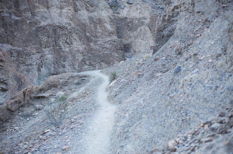 This narrow trail that leads to the right of the canyon allows you to pass the dryfall without having to climb.