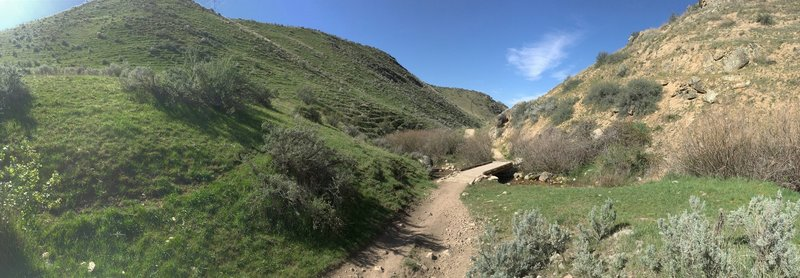 Corrals has several really nice stretches between the foothills and is well maintained, with easy water crossings.