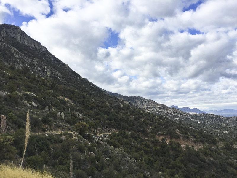 The beautiful Catalina Mountains.