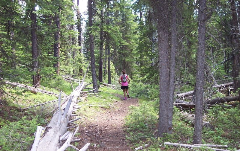 Running down the HURL Elkhorn 50 mile course, approximately 43 miles in.