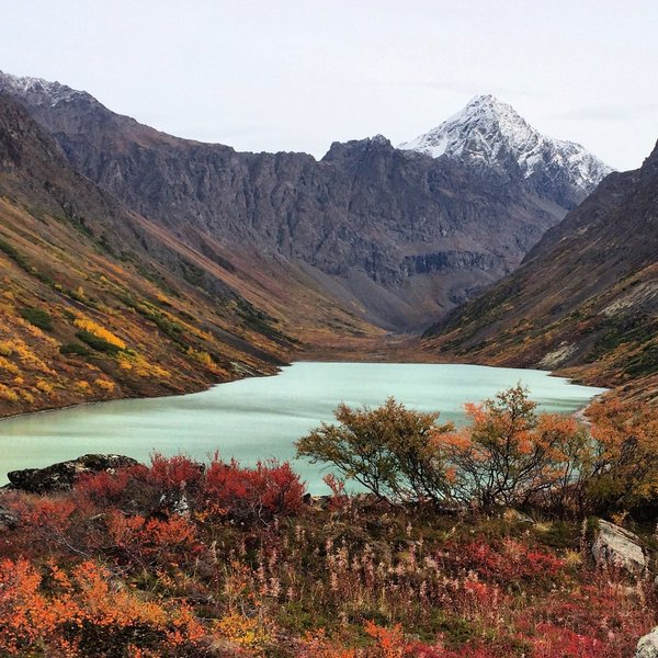 Fall Tundra in Chugach State Park.