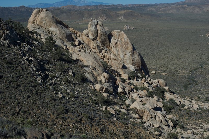 Rocks on the side of Ryan Mountain.