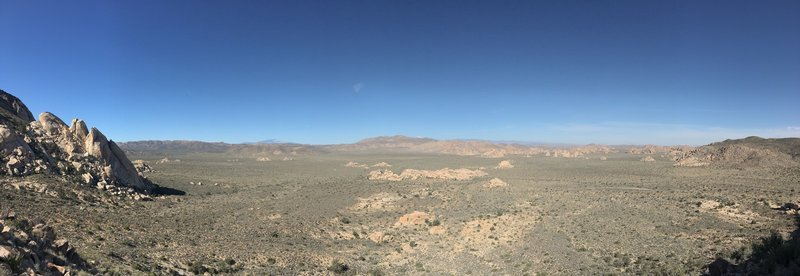 Joshua Tree National Park as viewed from the Ryan Mountain Trail.
