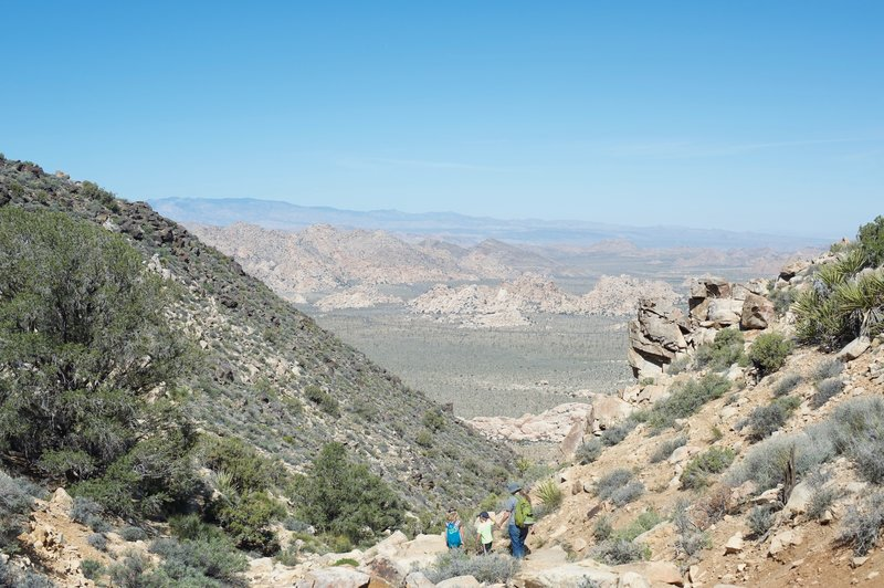 Roughly .9 miles into the hike, the trail levels off briefly as it passes through a saddle on the mountain.