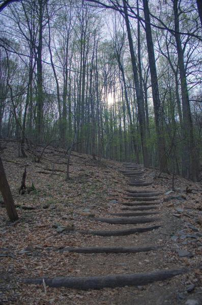 Trail on Mt. Misery, Valley Forge.