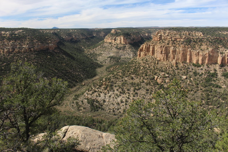 View of the canyon from the top of the Petroglyph Point Trail.
