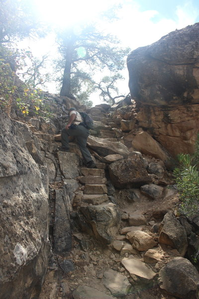 Climbing back to the top of the mesa on the Petroglyph Point Trail.
