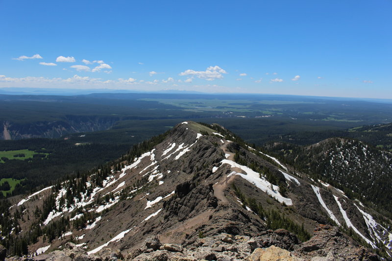The Mount Washburn Trail from the top of Mount Washburn.