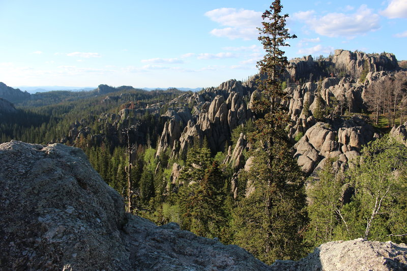 View from Harney Peak Trail #9.