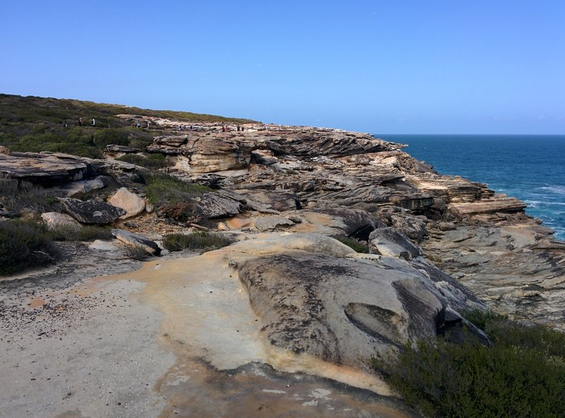 A rocky section of the Coast Track.