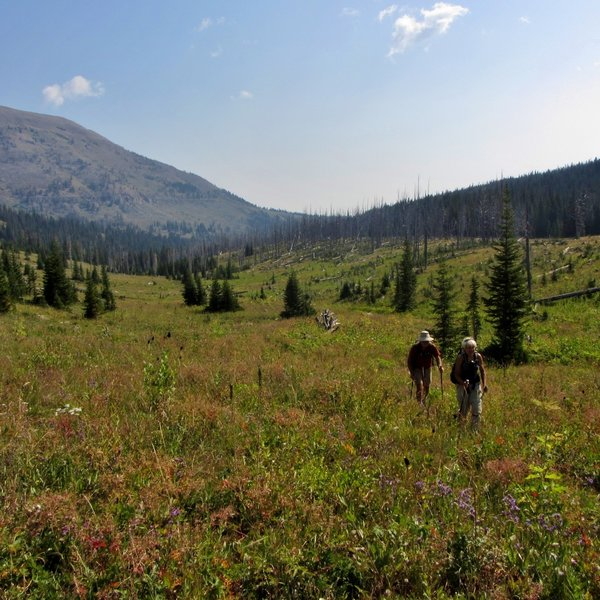 Hiking up through lush meadows toward Bighorn Peak.