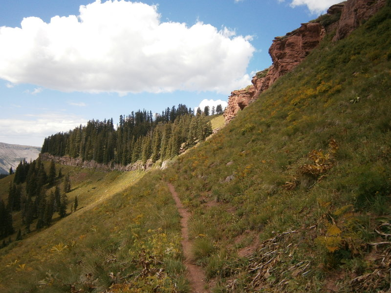 If you like tight singletrack, solitude, and epic views, White Creek is for you!