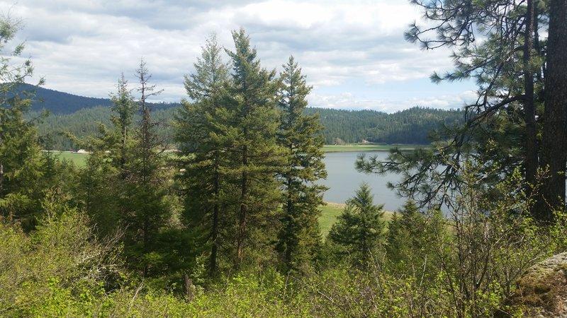 Newman Lake.