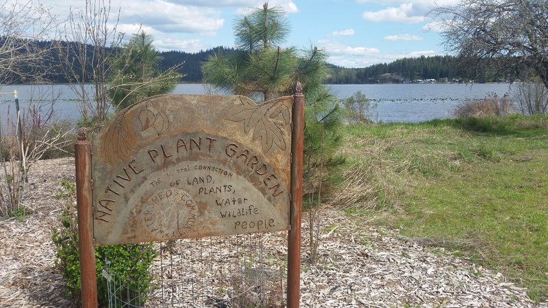 Native Plant Garden on Newman Lake.