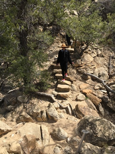 Shortly after passing the Petroglyphs, you'll climb these steps to get to the top of the Mesa.
