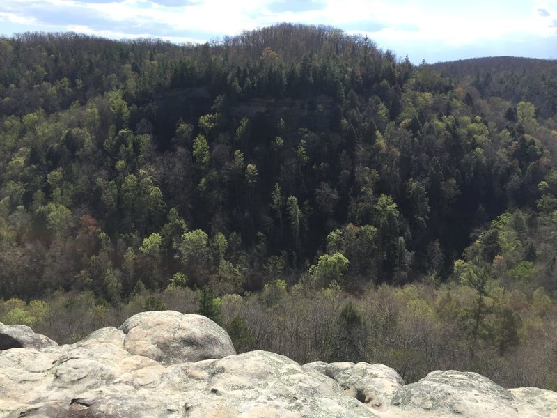 Big South Fork Recreational Area from the Fall Branch Overlook.