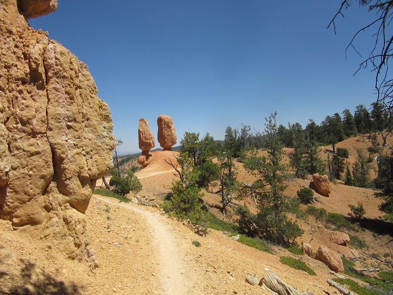 Beautiful trail at Thunder Mountain!