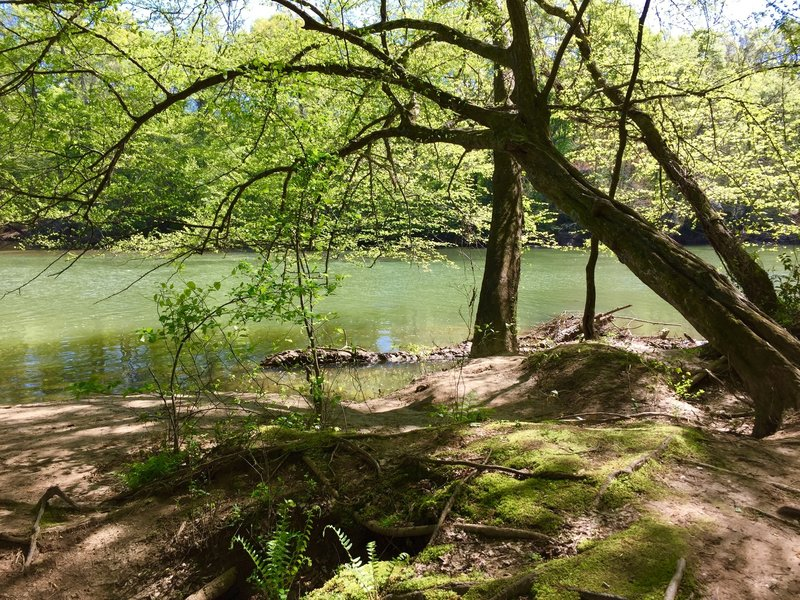 Spring green everywhere in this enchanted little spot: great for a peaceful pause along the way...