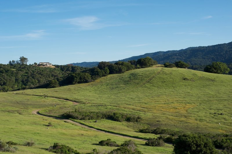 The Sunset Trail winds through the preserve as fields of wildflowers can be seen on either side.  The gentle climb on the Ridgeview Trail offers great views.