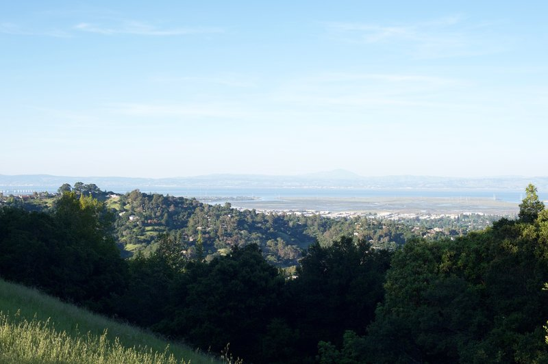 Views of the San Francisco Bay can be seen from the saddle where the Live Oak Trail meets up with the Ridgeview Trail.