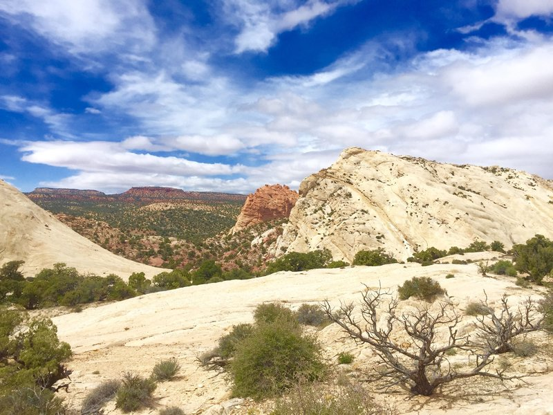 The view that's behind you when you reach the top of Strike Valley viewpoint.
