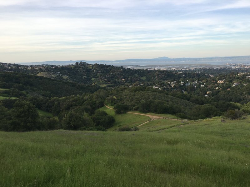 The Serpentine Trail and Sylvan Trail as seen from the Live Oak Trail.