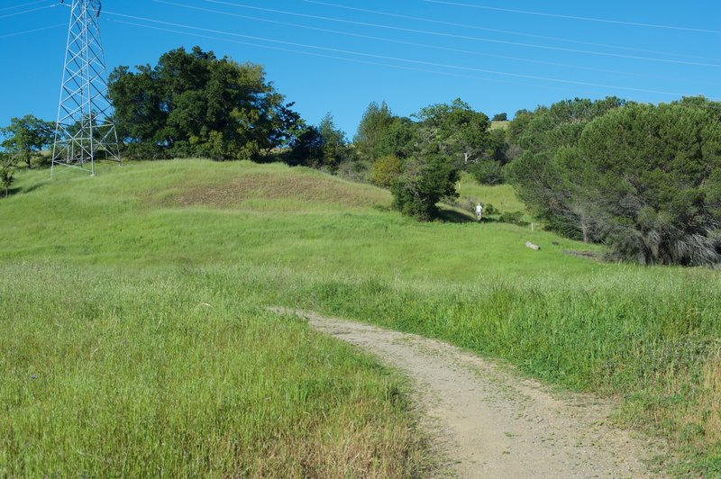 The trail as it winds up into the preserve.  In the spring, the grasslands are at the bottom of the trail.