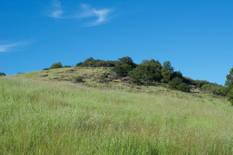 On the lefthand side of the trail, a rock field emerges from the grasslands above the trail.