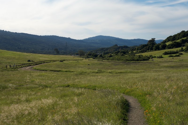 Looking back at the Sunset Trail as it makes its way toward the west and Interstate 280.
