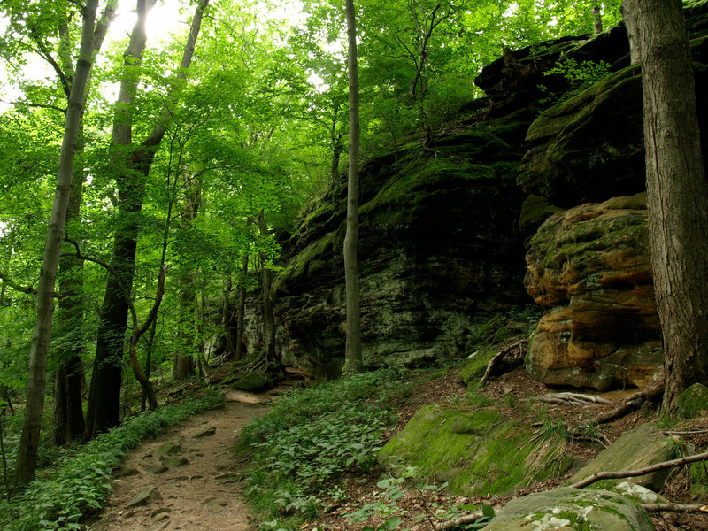 Ledges Trail at its most lush. Photo by Sue Simenc.