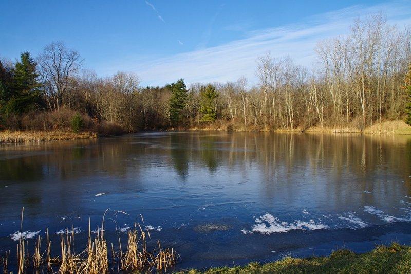 Horseshoe Pond on a crisp day. with permission from Rumiana Koynova-Tenchova