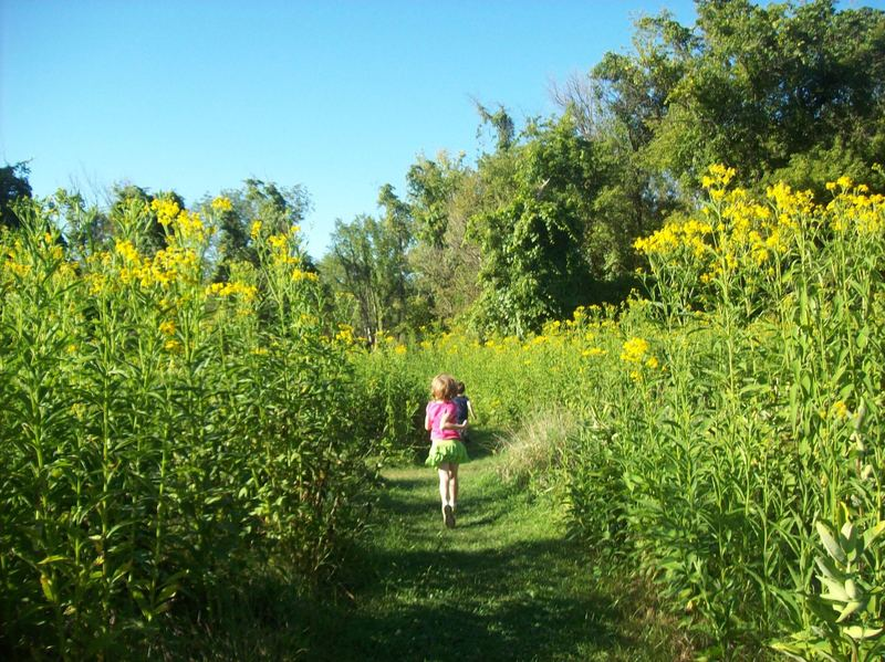 You'll hike through a small field before entering the woods on this diverse trail. Photo by Julie Grassley.