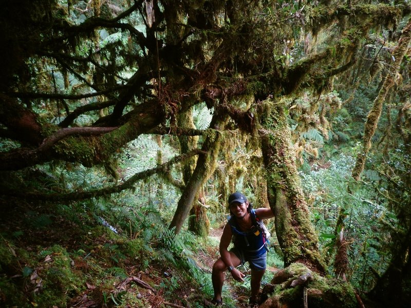 The mossy forest of KRUR! ;)