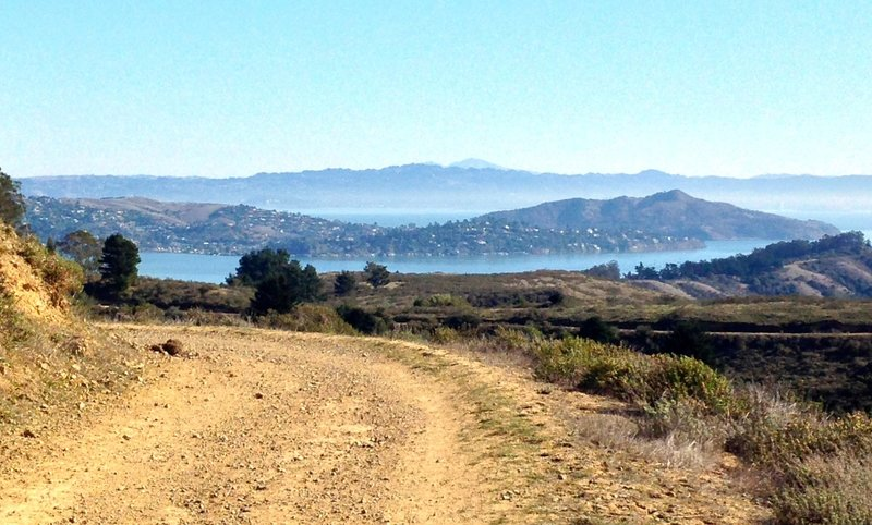 Miwok Trail cruises gently down a dirt road with plenty of scenery to stare at.