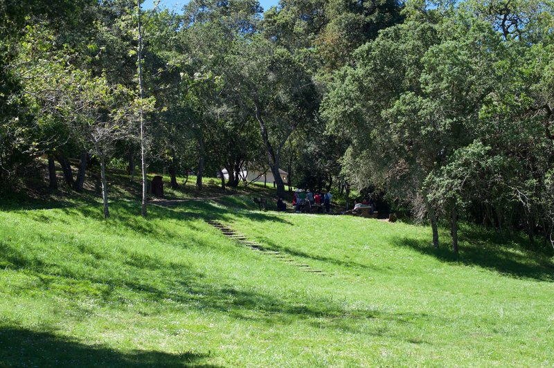 The picnic area in Edgewood Park.