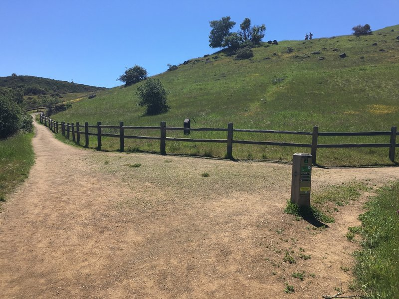 The trail intersects with the Serpentine Trail at a large open area.